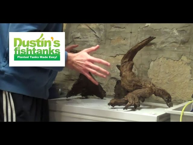 Perfect Driftwood Is Great For Aquascaping And The Most Important U0027ruleu0027 Of  Aquascaping Is Scape What You Will Like, Nobody Else. But There Is  Aquascaping Theory ...