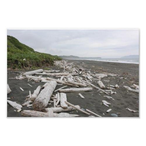 Driftwood in Kodiak Photo Print