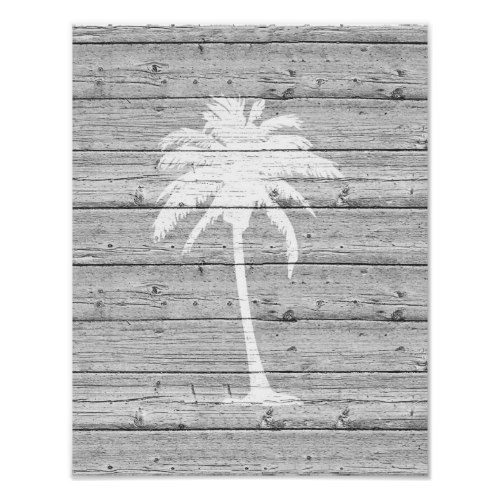 White Palm Tree on Driftwood Poster Print